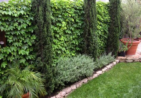 How To Make An Apply Unique Side Yard Landscaping Ideas