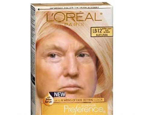 Donald Trump Hair Memes - here are the funniest donald trump memes bae dailybae daily bae daily delivers the most