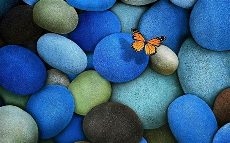 Butterfly And Stones by Butterfly On Blue Stones Free Desktop Backgrounds And