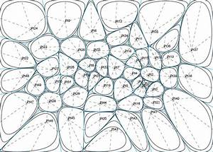 Methods  Voronoi  U0026 Delaunay