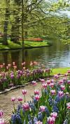 Dont miss out on the most beautiful garden in Europe beautiful flower gardens pinterest
