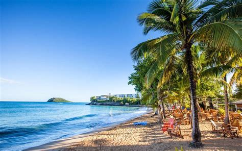 death  paradise guadeloupe  real life st marie