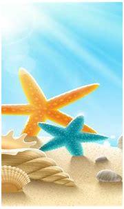 Underwater World Sea Stars Clams Snails Sand Sunlight ...