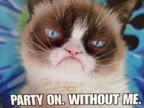 grumpy cat birthday grumpy cat birthday quotes quotesgram