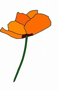 California Poppy Clip Art (49+)
