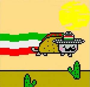 Cinco De Mayo Tacos GIF - Find & Share on GIPHY