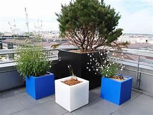 Plantes Grimpantes Pot Pour Terrasse : galerie photos bacs et jardins ~ Premium-room.com Idées de Décoration