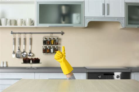 home cleaning services  grime  time plymouth mi