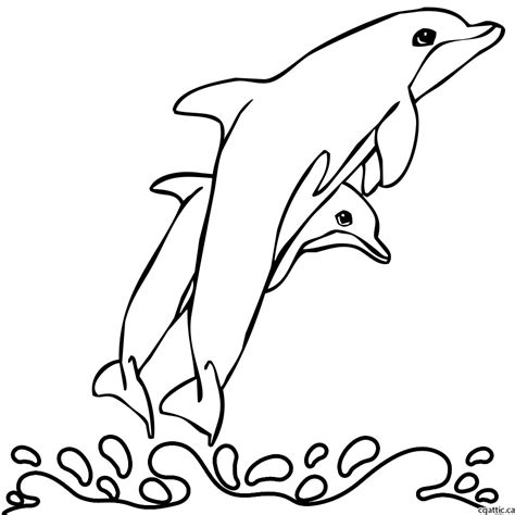 cartoon dolphin drawing   steps  photoshop