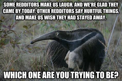 Anteater Meme - anteater funny quotes quotesgram