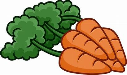 Carrot Clipart Carrots Bunch Vegetables Icon Ground