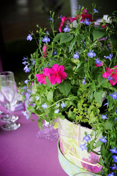 Potted Plant Centerpieces In A Vintage Hat Box Wedding