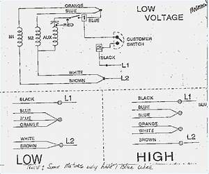 Electric Motor Wiring Diagram 220 To 110  U2013 Moesappaloosas Com