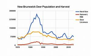 The 'Missing' Deer | NB datapoints