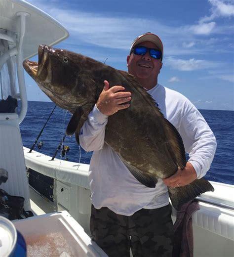 grouper catch fishing pound boat holding florida gordon caught go month tudor troy pass miles naples