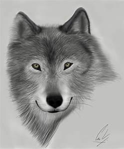 wolf face by chrestena on DeviantArt