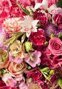 Wie Oft Blumen Gießen : blumen abonnement blumen pur ~ Orissabook.com Haus und Dekorationen
