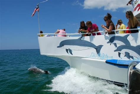 Glass Bottom Boat Tours In Destin Florida by Glass Bottom Boat Dolphin Cruise Picture Of Boogies