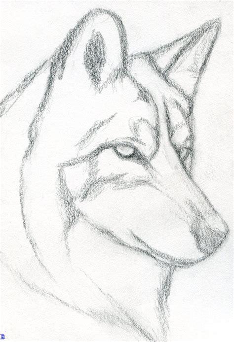 easy drawing tutorials  beginners cool