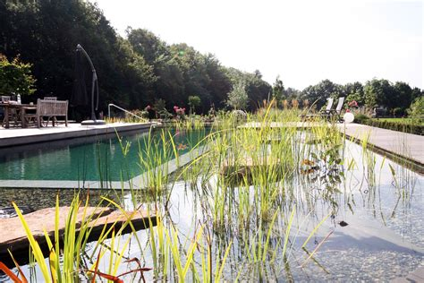 Der Schwimmteich Wohlfuehloase Im Garten by Schwimmteich Als Wohlf 252 Hloase Gestaltung