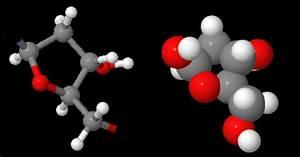 Basic Nucleotide Structure