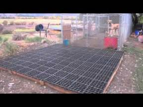 eco grid dog kennel youtube