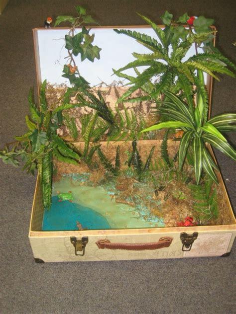 science rainforest ecosystem diorama dioramas