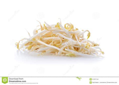 cuisiner les pousses de soja pousses de haricot pousses de soja photo stock image