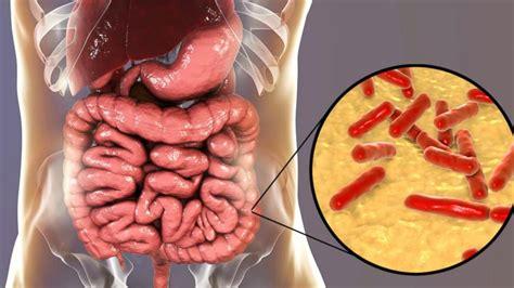 probiotics health abcnews abc means go play medical
