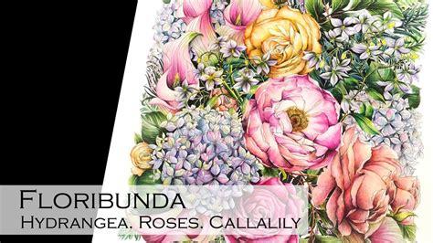 floribunda hydrangea rose  calalily adult coloring