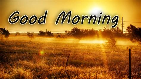 Good Morning Widescreen Wallpaper