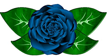 Free Blue Rose Cliparts Download Free Clip Art Free Clip