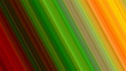 Multicolor Abstract Lines