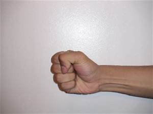 Can fist weapons be disarmed