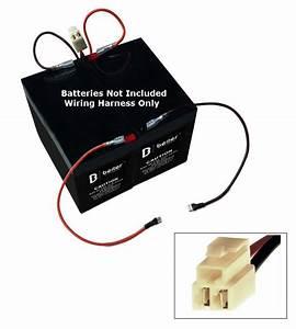 Razor E175 All Versions Wiring Harness