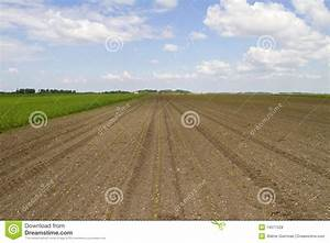 Fresh Tilled Field Royalty Free Stock Photos - Image: 14571528