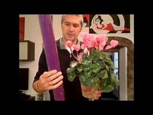 come confezionare un vaso (tutorial floreale) by marcop YouTube