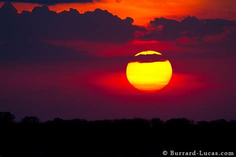 african sun burrard lucas photography