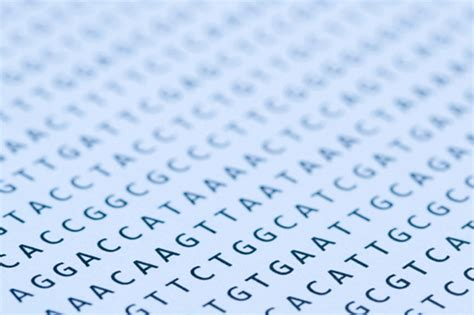 genome    dna sequencers broad