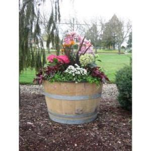 1000 ideas about whiskey barrel planter on