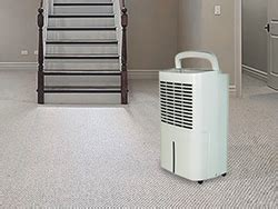 5 Best Dehumidifiers For Basement And Cellar Spaces Hix