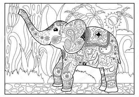 jungle coloring pages  png  premium templates