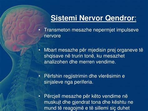 PPT - Fiziologjia e Emocioneve Sistemi nervor dhe ...