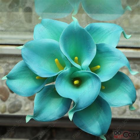 blue flower touch l 10pcs teal blue calla lily bouquet real touch callas