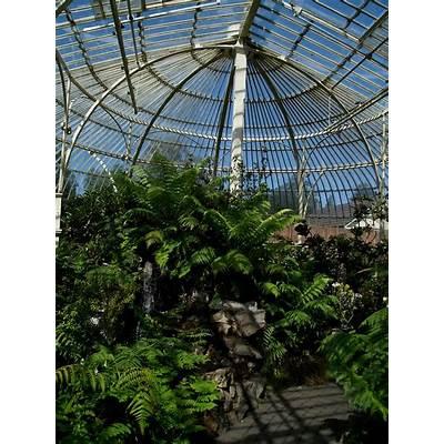Panoramio - Photo of National Botanic Gardens Dublin