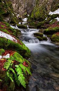 20 Beautiful Nature Photos