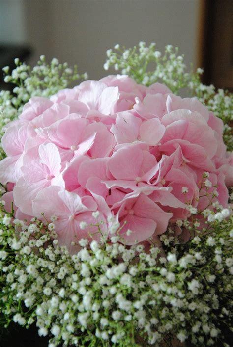 pink hydrangea  babys breath bouquet flower bouquet