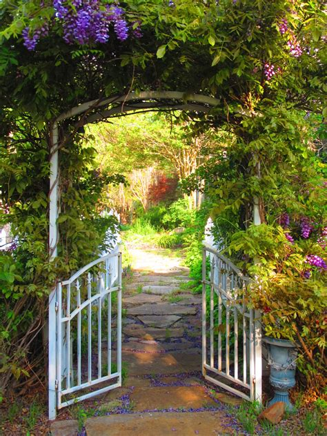 backyard gate beautiful garden gate expressions life dreams pinterest