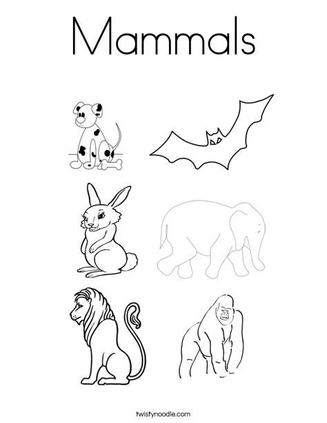 3 letter mammals mammals coloring page twisty noodle 20067   mammals 3 coloring page