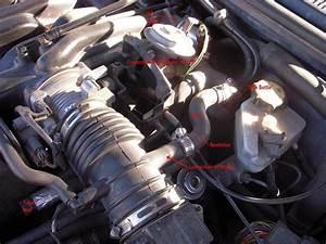 1999 Mercury Cougar Engine Diagram 1998 Mercury Mystique